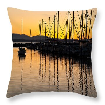 Coming In Throw Pillow by Mike Reid