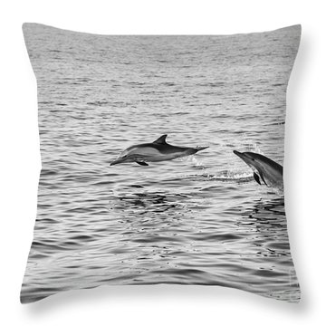 Common Dolphins Leaping. Throw Pillow by Jamie Pham