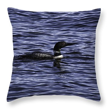 Common Loon 1  Throw Pillow by Thomas Young
