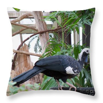 Common Piping Guan Throw Pillow by Lingfai Leung