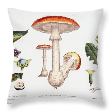 Common Poisonous Plants Throw Pillow by English School
