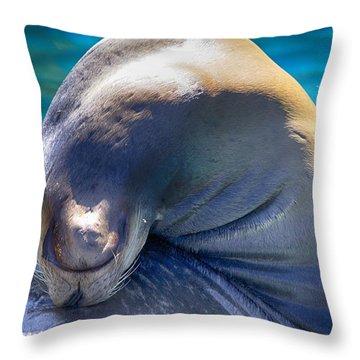 Contortionist Throw Pillow by Douglas Barnard