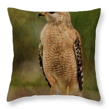 Convenience Store Hawk Throw Pillow by Deborah Benoit