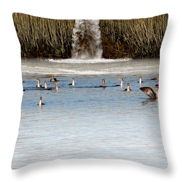 Cormorant Convention Throw Pillow by EricaMaxine  Price