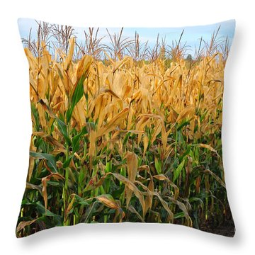 Corn Harvest Throw Pillow by Terri Gostola