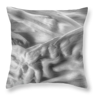 Corn Husk - A Beautiful Chaos Throw Pillow by Tom Mc Nemar