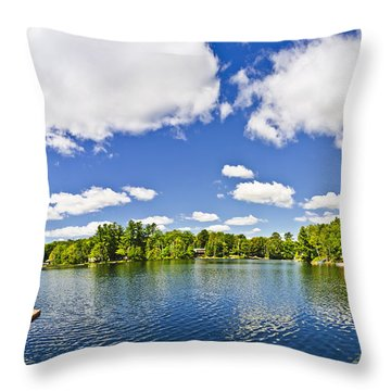 Cottage Lake With Diving Platform And Dock Throw Pillow by Elena Elisseeva