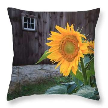 Country Flower Throw Pillow by Bill Wakeley