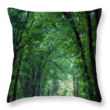 Country Lane Throw Pillow by Cricket Hackmann
