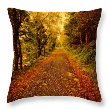 Country Lane V2 Throw Pillow by Adrian Evans
