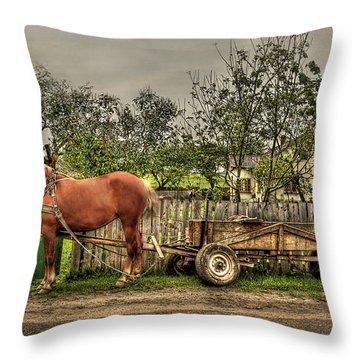 Country Life Throw Pillow by Evelina Kremsdorf