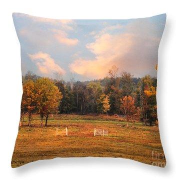 Country Morning Throw Pillow by Jai Johnson