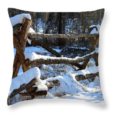 Covered In Snow Throw Pillow by Fiona Kennard