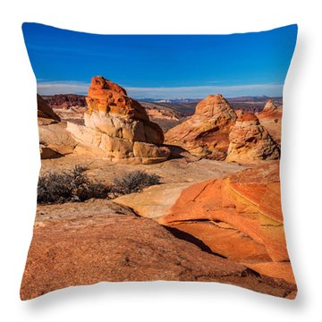 Coyote Lines Throw Pillow by Chad Dutson