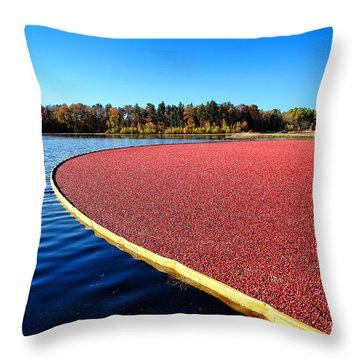Cranberry Harvest In New Jersey Throw Pillow by Olivier Le Queinec