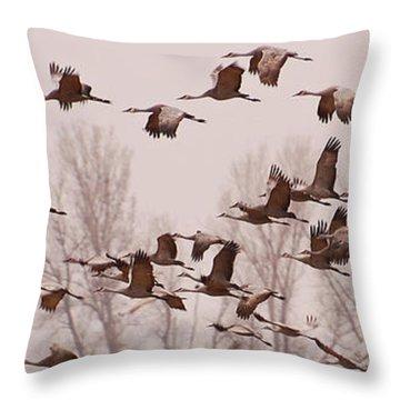 Cranes Across The Sky Throw Pillow by Don Schwartz