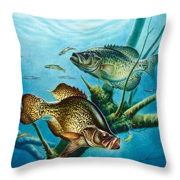Crappie And Root Throw Pillow by Jon Q Wright