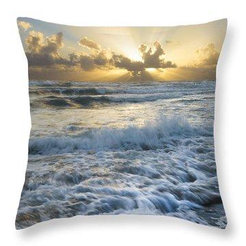Crash Throw Pillow by Debra and Dave Vanderlaan