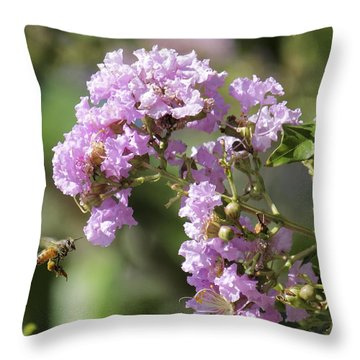 Crepe Myrtle And Honey Bee Throw Pillow by Jason Politte