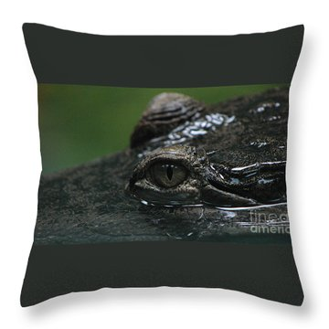 Croc's Eye-1 Throw Pillow by Gary Gingrich Galleries