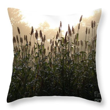 Crops In Fog Throw Pillow by Olivier Le Queinec