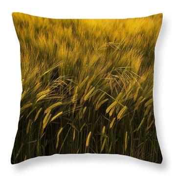 Crops Throw Pillow by Svetlana Sewell