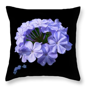 Crown Of Glory Throw Pillow by Doug Norkum