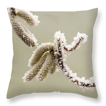Crunchy Catkins Throw Pillow by Anne Gilbert