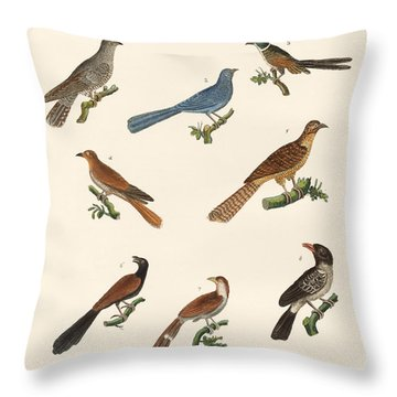 Cuckoos From Various Countries Throw Pillow by Splendid Art Prints