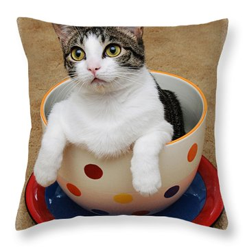 Cup O Tilly 1 Throw Pillow by Andee Design
