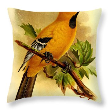 Curacao Oriole Throw Pillow by J G Keulemans