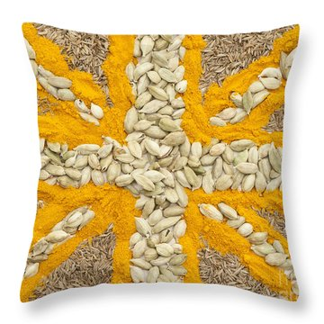 Curried Flag Throw Pillow by Anne Gilbert