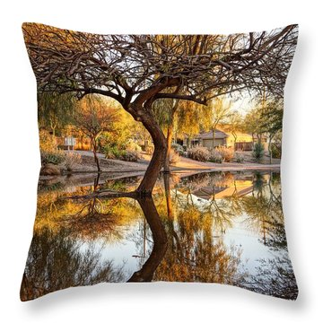 Curved Reflection Throw Pillow by Kerri Mortenson