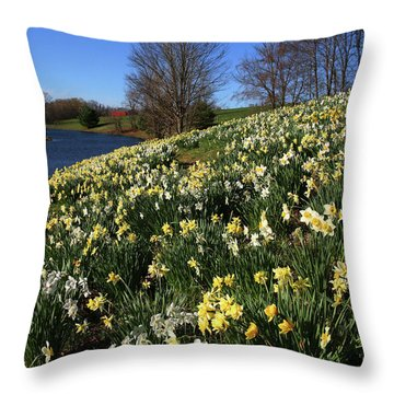 Daffodil Hill Throw Pillow by Karol Livote