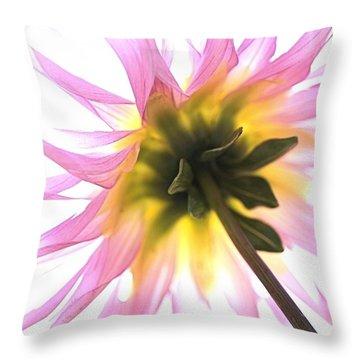 Dahlia Flower Throw Pillow by Joy Watson
