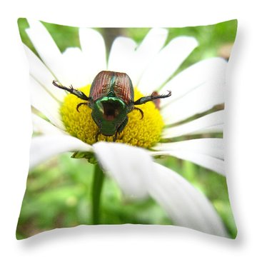Daisies Bug Throw Pillow by Jennifer E Doll