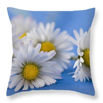 Daisies On Blue Throw Pillow by Jan Bickerton