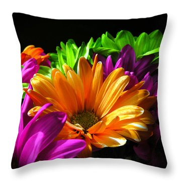 Daisy Delight Throw Pillow by David Quist