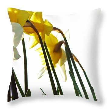 Dancing With The Daffodils Throw Pillow by Pamela Patch