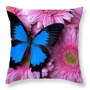 Dark Blue Butterfly Throw Pillow by Garry Gay