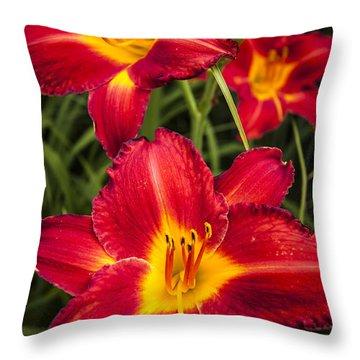 Day Lilies Throw Pillow by Adam Romanowicz