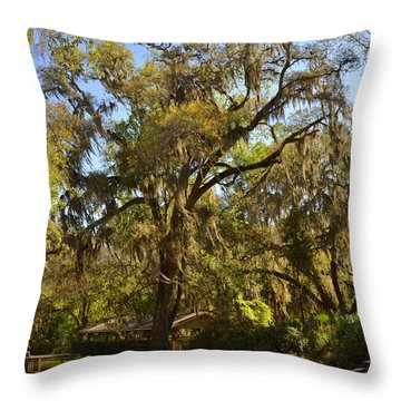 De Leon Springs - Classic Old Florida Throw Pillow by Christine Till