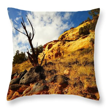 Dead Tree Against The Blue Sky Throw Pillow by Jeff Swan