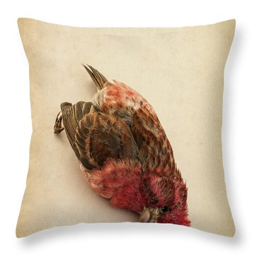 Death Of The Innocent Throw Pillow by Edward Fielding
