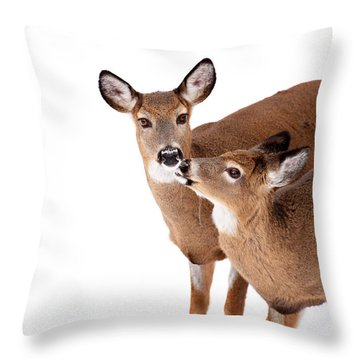 Deer Kisses Throw Pillow by Karol Livote