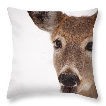 Deer Talk Throw Pillow by Karol Livote