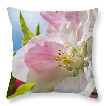 Delicate Spring Blossom Throw Pillow by Mr Bennett Kent
