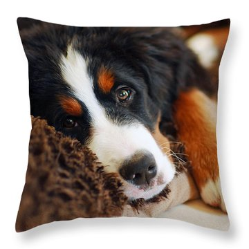 Delilah Throw Pillow by Lisa Phillips