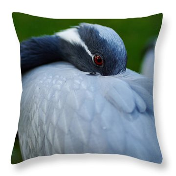 Demoiselle Crane Throw Pillow by Jouko Lehto