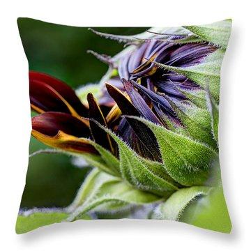 Demure Throw Pillow by Heidi Smith